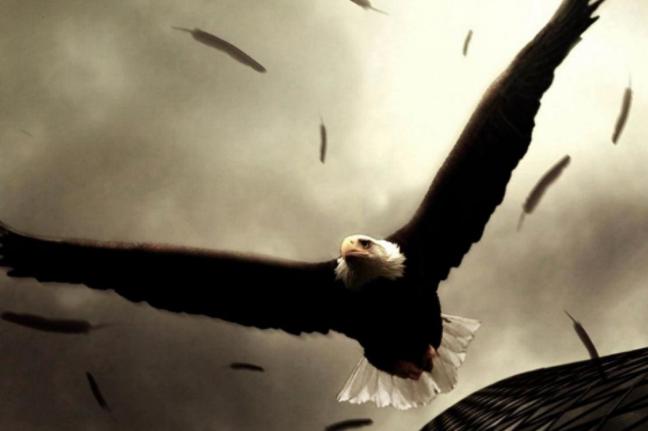 志存高远 追求卓越——做一名飞向太阳的雄鹰